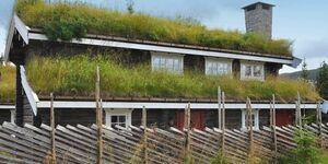 Ferienhaus in Fåvang, Haus Nr. 43195 in Fåvang - kleines Detailbild