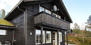 Ferienhaus in Åseral, Haus Nr. 53187 in Åseral - kleines Detailbild