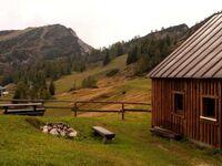 Grashütte Tauplitzalm, Almhütte in Tauplitz - kleines Detailbild