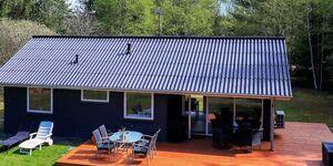 Ferienhaus in Jerup, Haus Nr. 33383 in Jerup - kleines Detailbild