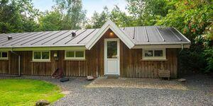 Ferienhaus in Ansager, Haus Nr. 42460 in Ansager - kleines Detailbild