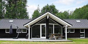 Ferienhaus in Gedsted, Haus Nr. 50560 in Gedsted - kleines Detailbild
