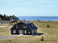 Ferienhaus in Skjern, Haus Nr. 53982 in Skjern - kleines Detailbild