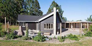 Ferienhaus in Rønde, Haus Nr. 55967 in Rønde - kleines Detailbild