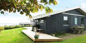 Ferienhaus in Ebberup, Haus Nr. 67337 in Ebberup - kleines Detailbild
