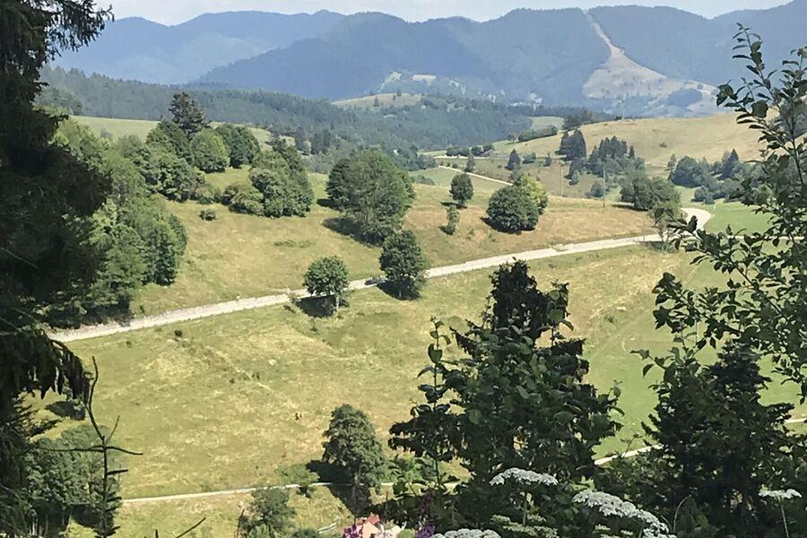 Luftkurort Malsburg-Marzell