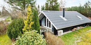 Ferienhaus in Fårvang, Haus Nr. 95726 in Fårvang - kleines Detailbild