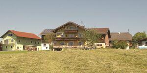 Sunnhof (4 Blumen) - Krempler, Ferienwohnung Arnika in Oberhofen am Irrsee - kleines Detailbild