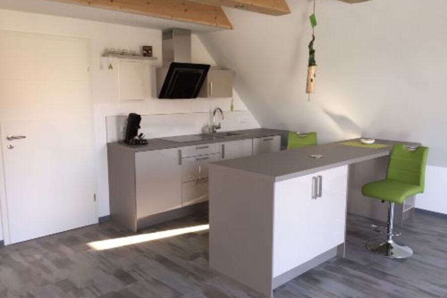 Küche mit Geschirrspüler und Ceranfeld