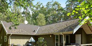 Ferienhaus in Nexø, Haus Nr. 12330 in Nexø - kleines Detailbild