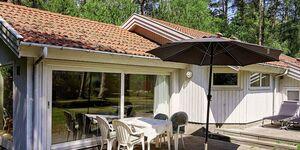 Ferienhaus in Nexø, Haus Nr. 31123 in Nexø - kleines Detailbild