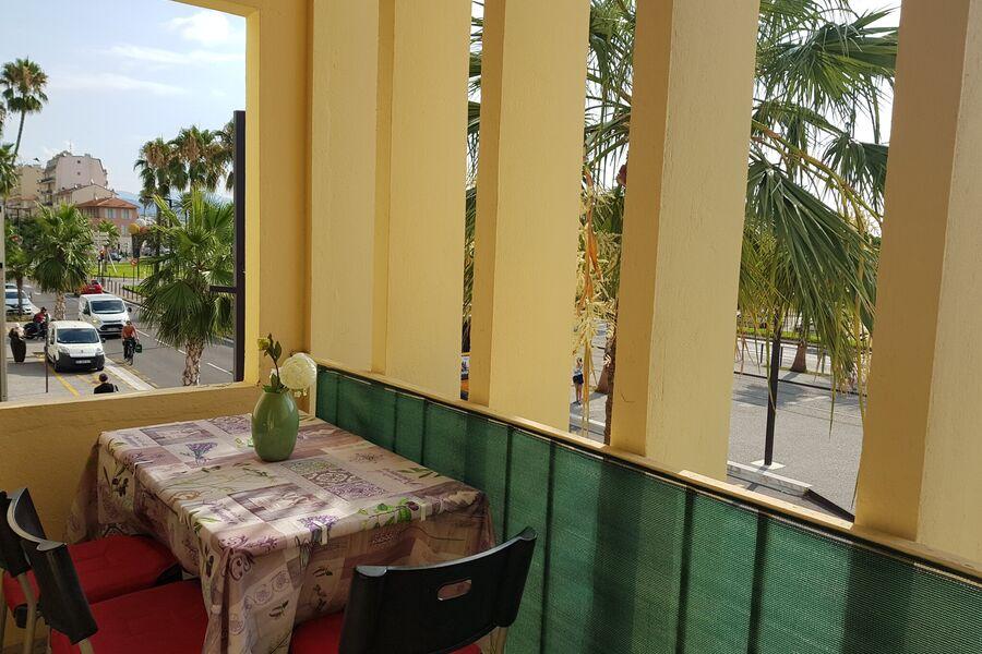 Balkon und Palmen