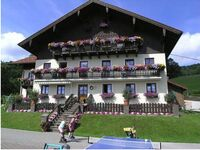 Weberhof Nußbaumer (4 Blumen) - Lohninger, Panoramablick in Tiefgraben - kleines Detailbild