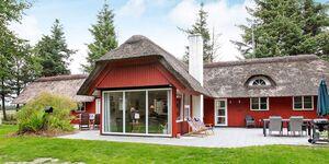 Ferienhaus in Blåvand, Haus Nr. 63754 in Blåvand - kleines Detailbild