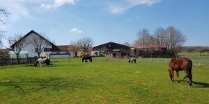 Ferienhof Sennert, Fewo Rose in Kirchzell-Preunschen - kleines Detailbild