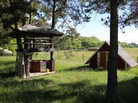 HavelFinn - Finnhütte, Sauna - rustikale Ferien auf dem Land, Finnhütte und Sauna - rustikale Ferien in Schöneiche - kleines Detailbild