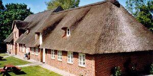 Friesisches Reetdach-Ferienhaus Jacob in Bordelum - kleines Detailbild