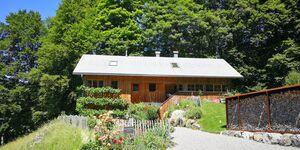 Ferienhaus Bregenzerwald-Alm in Bizau - kleines Detailbild