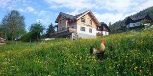 Knödl-Alm Landhaus, Appartement Toni in Bad Mitterndorf - kleines Detailbild