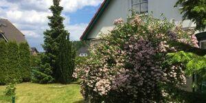Ferienwohnung am Walde in Trassenheide - kleines Detailbild