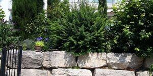 Residenz am Berg, Wohnung 1 Sonne mit 3 Zimmern,1 Doppel- 1 Zimmer mit 2 Einzelbetten, Wohnraum mit  in Leimen - kleines Detailbild