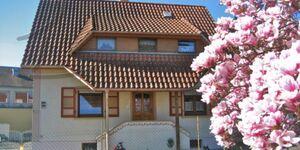FERIENWOHNUNG BITTO BEIM EUROPA PARK RUST 4KM, Ferienwohnung 135qm, 3 Schlafräume, max. 12 Personen in Rheinhausen - kleines Detailbild