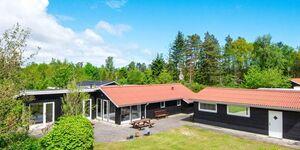 Ferienhaus in Ørsted, Haus Nr. 95259 in Ørsted - kleines Detailbild