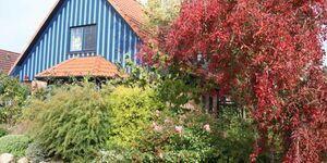 Blaues Haus, Apartment Elbglück in Glückstadt - kleines Detailbild