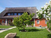Appartement ' Musche l'  mit Seeblick  und Garten, Apartement ' Muschel ' in Gager mit Seeblich und  in Gager - kleines Detailbild