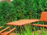 ! Fewo 'Haus Auguste' 45046, Fewo 2,45002 in Göhren (Ostseebad) - kleines Detailbild