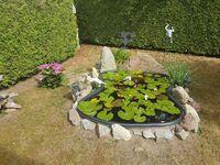Ostsee-Muschel, Wohnung 15 in Zinnowitz (Seebad) - kleines Detailbild