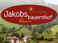 Jakobsbauernhof, Hofblick Nichtraucher-Ferienwohnung, 60qm max. 4 Personen in Freiamt - kleines Detailbild