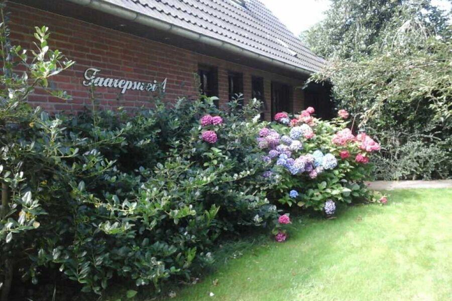 Ferienwohnung in Borgsum (oben rechts), 504 Ferien
