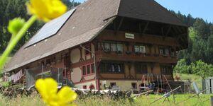 Wäldebauernhof, Doppelzimmer mit Etagenbad , 2 - 2 Personen in Gutach - kleines Detailbild