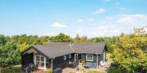 Ferienhaus in Skjern, Haus Nr. 78068 in Skjern - kleines Detailbild