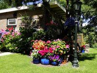 Ferienwohnung Hortensia in Callantsoog - kleines Detailbild