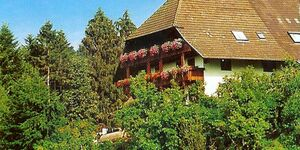 Schwörerhof., Ferienwohnung 50qm, 1 Schlafraum, max. 3 Personen in Schuttertal - kleines Detailbild