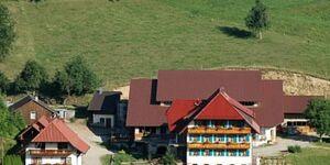 Wanglerhof, Ferienwohnung Schwalbennest 80qm. 2 Schlafräume, max. 6 Personen in Schuttertal - kleines Detailbild