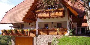Rufenbauernhof, Ferienwohnung  36 m² in Schuttertal - kleines Detailbild