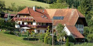 Ferienhaus Gehring, Ferienwohnung 85qm, 2 Schlafräume, max. 6 Personen in Schuttertal - kleines Detailbild
