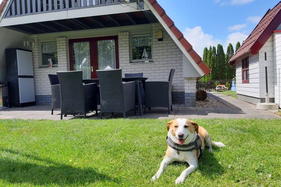 Willkommen im Haus Svenja
