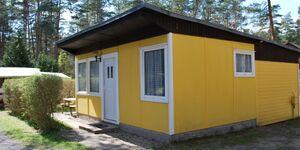 Ferienanlage Kagar SEE 8870-4, SEE 8874 - Grünspecht in Rheinsberg OT Kagar - kleines Detailbild
