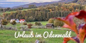 Drachenhaus, Ferienwohnung Drachenhaus in Rimbach - kleines Detailbild