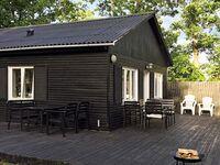 Ferienhaus in Læsø, Haus Nr. 87848 in Læsø - kleines Detailbild