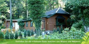 Ferienhaus Hubertushöhe in Crinitzberg-Bärenwalde - kleines Detailbild