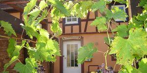 Gästehaus Zum Salztrippler in Rumbach - kleines Detailbild