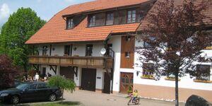 Haus Freudig, Ferienwohnung 50qm, 1 Wohn--Schlafraum in Höchenschwand - kleines Detailbild