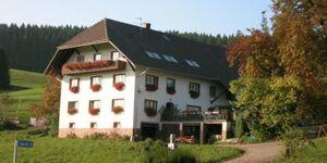 Hinehof, Ferienwohnung 48qm, 1 Schlafraum, 1 komb. Wohn-Schlafbereich, max. 4 Personen , 1 - 4 Perso in Biederbach - kleines Detailbild