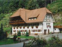 Venturhof, Ferienwohnung 'Berg' (70qm), 2 Schlafräume, max. 5 Personen in Wolfach - kleines Detailbild