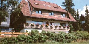Pension Goß, Seeblick in Schluchsee - kleines Detailbild